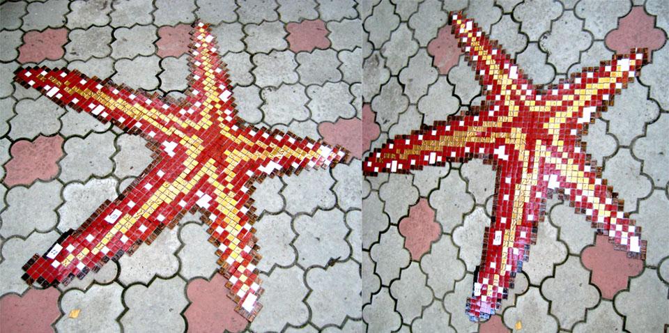 Mosaic_Star_Pool
